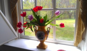 Nothing like a gorgeous vase and tulips