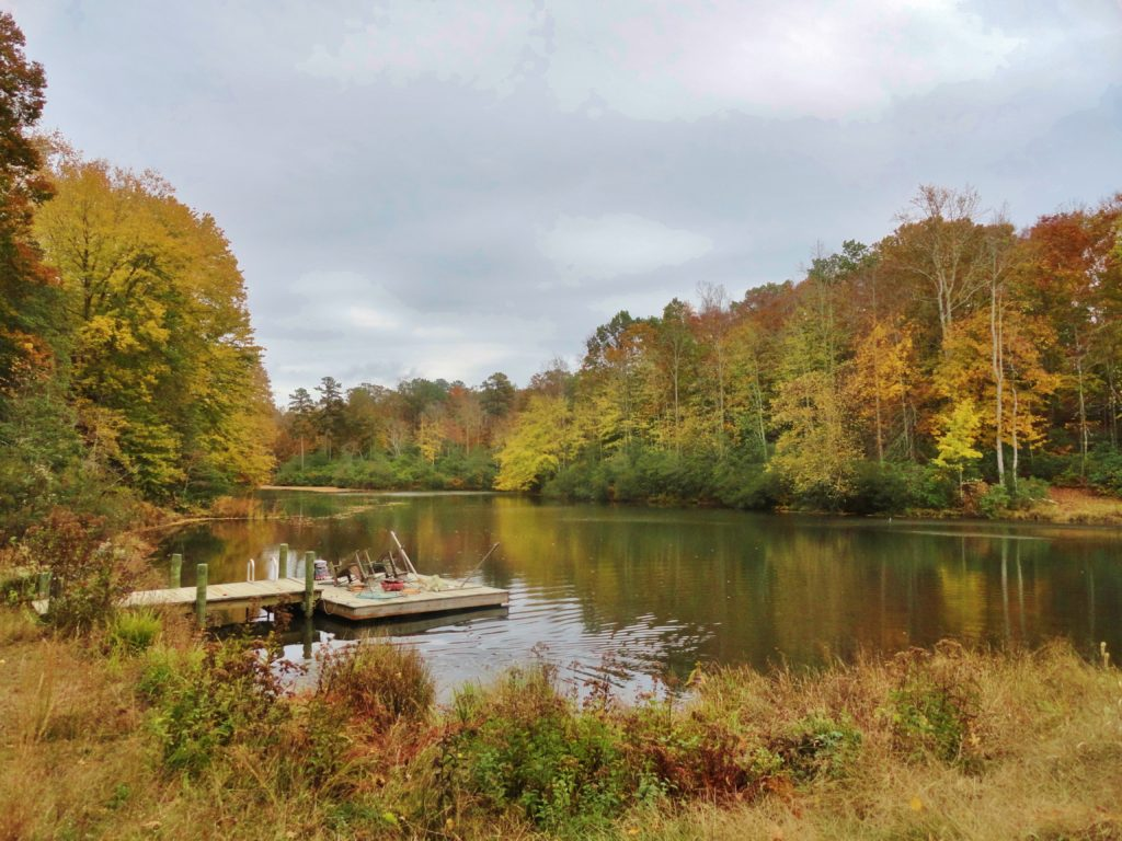 Skye Pond at Mahockney, autumn 2012